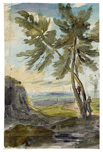 Paire d'arbres, 1905-1807